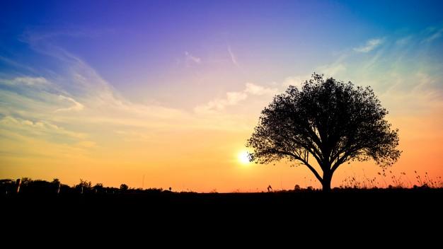 Spiritual Takeaways